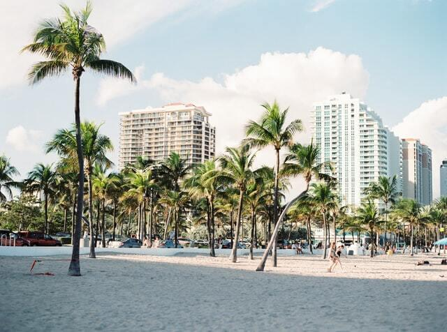 white sand beaches with palm trees in miami. Miami is a good city to vist in 2021
